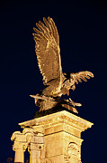 Historic Statue Posters - Turul Bird Statue at Night in Budapest Poster by Artur Bogacki