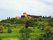 Tuscan Landscapes Prints - Tuscan Countryside Print by Ellen Henneke
