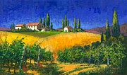 Grape Vines Posters - Tuscan Evening Poster by Michael Swanson