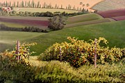 Grape Vineyard Painting Framed Prints - Tuscan Hills Framed Print by Michael Swanson