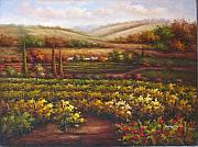 Napa Valley Vineyard Paintings - Tuscan Valley Vineyard by Cooper