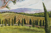 Tuscan Landscapes Paintings - Tuscan Vineyard by Melinda Saminski