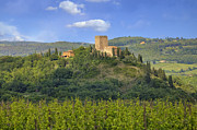 Vineyards Photos - Tuscany - Arigiano by Joana Kruse