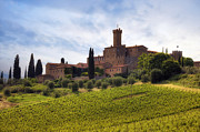 Vineyards Photo Posters - Tuscany- Castello di Poggio alla Mura Poster by Joana Kruse