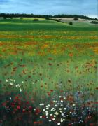 Tuscany Flower Field Print by Cecilia  Brendel