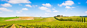 Blue Grapes Framed Prints - Tuscany landscape panorama Framed Print by JR Photography
