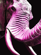 Elephant Art Prints - Tusk 2 - Pink Elephant Art Print by Sharon Cummings