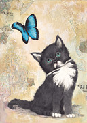 Kitten Prints Posters - Tuxedo and Butterfly Poster by Darlene Fletcher