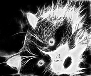 Animal Shelter Digital Art - Tuxedo Cat in Black and White by Marlene Watson