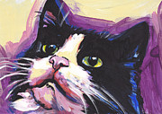 Tuxedo Cat Painting Framed Prints - Tuxedo Cat Framed Print by Lea