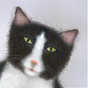 Marlene Watson Art - Tuxedo cat Tetley close up by Marlene Watson