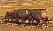 Mules Prints - Twenty-Mule Team in Sepia Print by Robert Bales