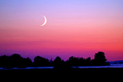 Man-in-the-moon Prints - Twilight And Crescent Moon - Lummi Bay Print by Douglas Taylor