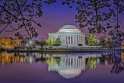 Cherry Blossoms Framed Prints - Twilight At The Thomas Jefferson Memorial  Framed Print by Susan Candelario