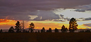 Tom Kelly - Twilight in Flagstaff #2