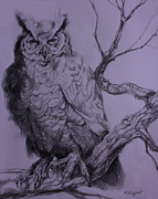 Disc Drawings - Twilight Owl by Derrick Higgins
