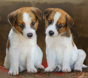 R christopher Vest - Twin Puppies Portrait