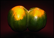 Acorn Digital Art - Twin Squash by Gary Olsen-Hasek