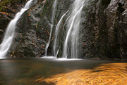 Fall Photos Posters - Twirling Leaves at Moss Glen Waterfall Poster by Juergen Roth