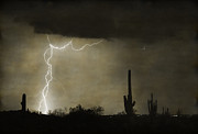 Saguaro Cactus Posters - Twisted Desert Lightning Storm Poster by James Bo Insogna