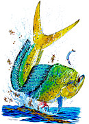 Mahi Mahi Painting Posters - Twisted Mahi Poster by Carey Chen