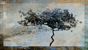 Stormy Sky Prints - Twisted Tree Print by David Ridley