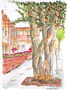 Laguna Beach Painting Prints - Twisted-trees-in-Laguna-Beach-CA Print by Carlos G Groppa