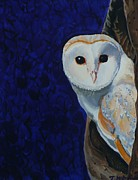 Bird Prints Paintings - Twit Twoo by Janet Mcdonald