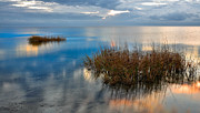 Calm Waters Posters - Two Alone in Pamlico Sound I Poster by Dan Carmichael