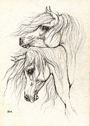 Custom Horse Portrait Prints - Two Arabian Horses Drawing Print by Angel  Tarantella