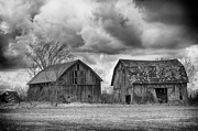 Farming Barns Prints - Two Barns in Black and White Print by Todd Bielby