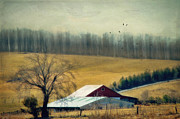 Kathy Jennings - Two Barns