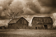 Farming Barns Prints - Two Barns Print by Todd Bielby