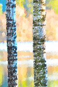Lush Originals - Two birch trees by Tommy Hammarsten