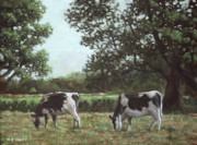Friesian Paintings - Two Cows in field at Throop Dorset UK by Martin Davey