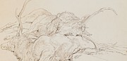 On Paper Drawings - Two Dead Stags by Sir Edwin Landseer
