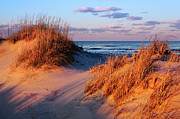 Pea Island Posters - Two Dunes at Sunset - Outer Banks Poster by Dan Carmichael