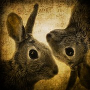 Buns Prints - Two Hares Print by Gothicolors And Crows