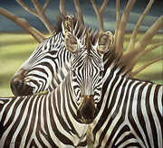 Zebras Prints - Two Heads Are Better Than One Print by Laura Regan