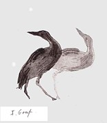 Herons Drawings - Two herons etching by Ilana Graf