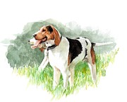 Sporting Art Originals - Two Hounds by Debra Jones