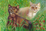 Italian White Poppy Paintings - Two Kittens In A Poppy Meadow by Maria Pia Guarneri