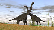 Prehistoric Digital Art - Two Large Brachiosaurus In Prehistoric by Kostyantyn Ivanyshen
