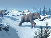 Snow-covered Landscape Digital Art Prints - Two Large Mammoths Walking Slowly Print by Elena Duvernay
