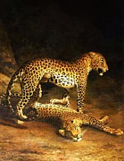 Leopards Paintings - Two leopards by Pg Reproductions
