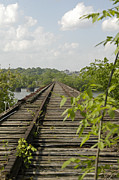 Hugh Peralta - Two Level Railway Bridge