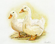 Duck Pastels - Two Little Ducks by Sarah Dowson