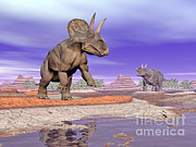 Three Dimensional Posters - Two Nedoceratops Next To Water Poster by Elena Duvernay