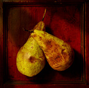 Overripe Prints - Two Old Pears Print by Stephen Martin
