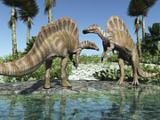 Hadrosaurid Posters - Two Ouranosaurus Grazing In A Stream Poster by Craig Brown